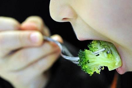 Kinder essen Brokkoli oft nur ungern. Laut einer Studie könnte es an ihrem Speichel liegen, der bei Kohlgemüse hohe Mengen an flüchtigen Schwefelverbindungen produziert. Foto: picture alliance / dpa