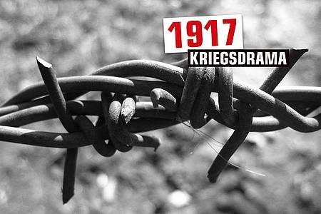 """Stacheldraht mit Aufschrift """"1917"""""""