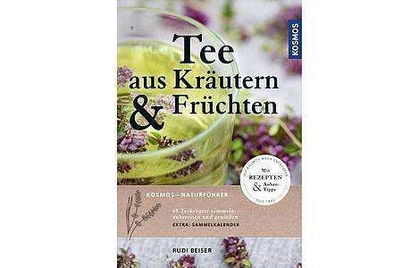 Rudi Beiser: Tee aus Kräutern und Früchten: 68 Teekräuter sammeln, zubereiten und genießen. Kosmos, 2020, 196, Seiten, 17 Euro, EAN: 9783440166192. Foto: Kosmos Verlag/dpa-tmn