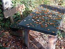 Gartentisch und Bank mit Laub bedeckt
