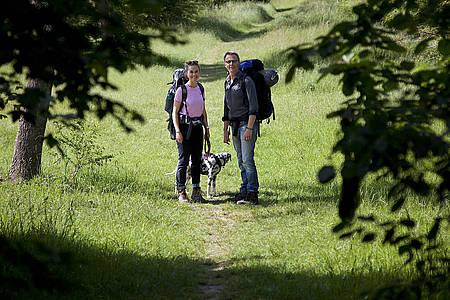 Wanderbar Podcast Cover - Jule, Markus und Dalmatinerdame Lily auf einem Wald-Wanderweg