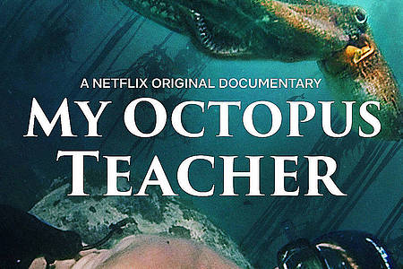 Filmplakat von My Octopus Teacher